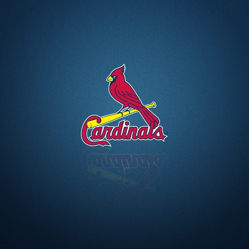 10 Best St Louis Cardinals Logo Wallpaper FULL HD 1080p For PC Desktop 2021 free download st louis cardinals logo backgrounds pixelstalk 800x800