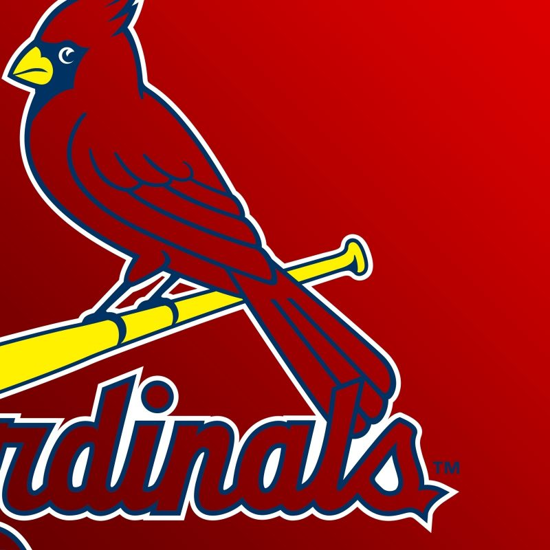 10 Best St Louis Cardinals Logo Wallpaper FULL HD 1080p For PC Desktop 2021 free download st louis cardinals logo e29da4 4k hd desktop wallpaper for 2 800x800