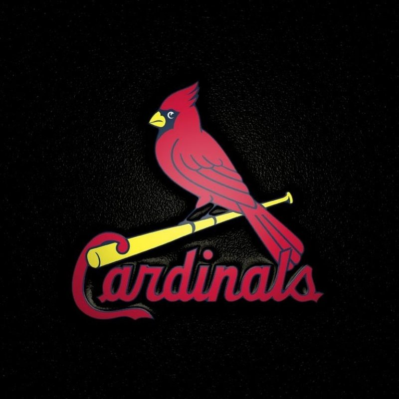 10 Most Popular St Louis Cardinal Wallpaper FULL HD 1920×1080 For PC Desktop 2018 free download st louis cardinals wallpapers st louis cardinals background 3 800x800
