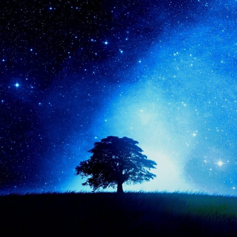 10 Best Stars At Night Wallpapers FULL HD 1920×1080 For PC Background 2020 free download stars at night wallpaper 62 images 2 800x800