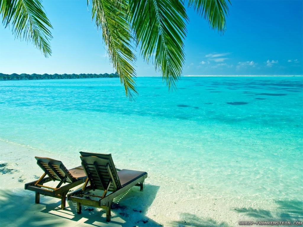 summer desktop backgrounds free