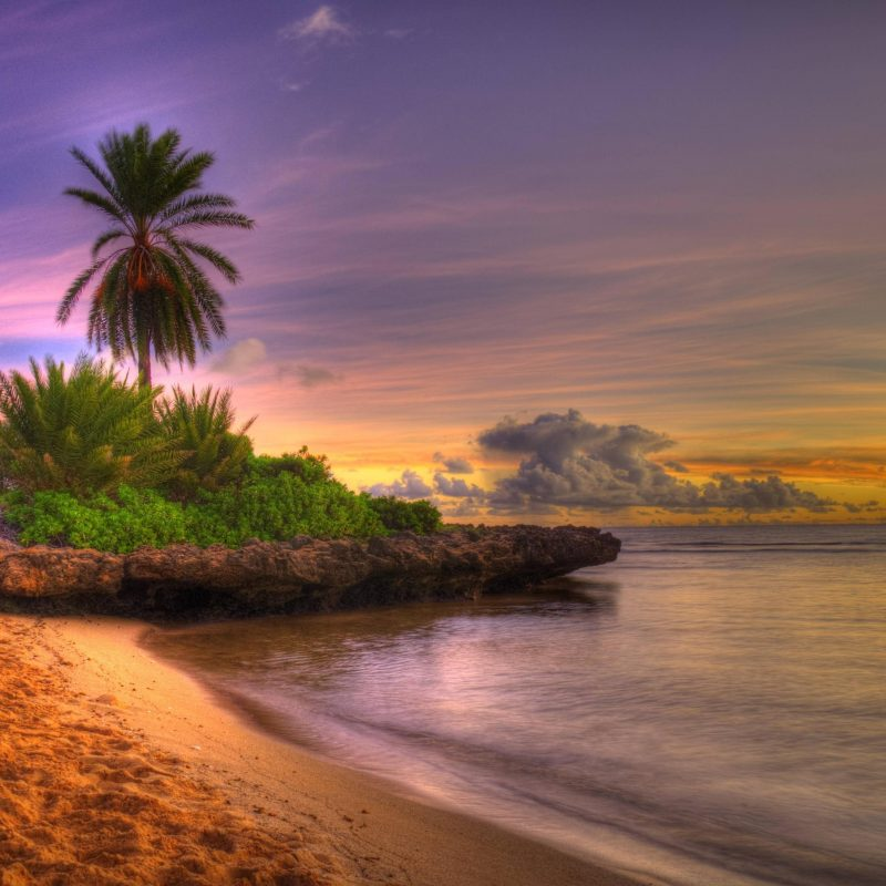 10 Latest Desktop Backgrounds Beach Sunset FULL HD 1920×1080 For PC Background 2020 free download sunset beaches wallpapers wallpaper cave 2 800x800