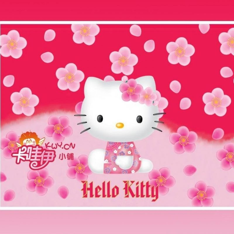 10 Top Free Hello Kitty Wallpapers FULL HD 1080p For PC Background 2018 free download sweetness decoration simple elegance wall blossomings falling flower 1 800x800