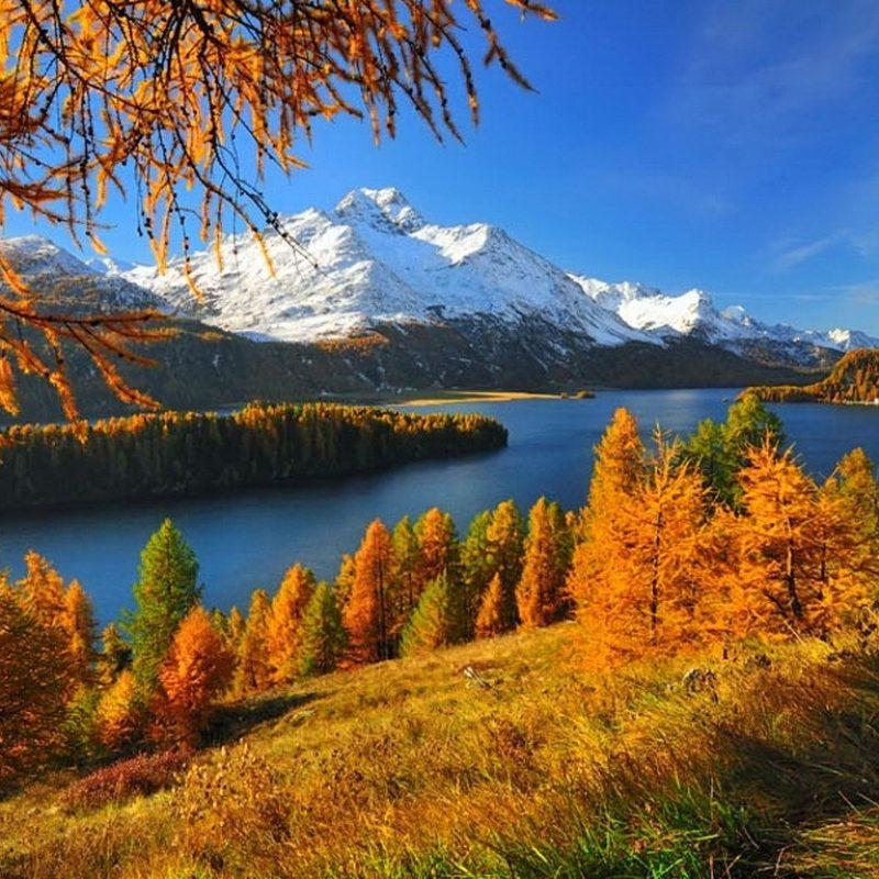 10 Top Autumn Scenes Desktop Wallpaper FULL HD 1920×1080 For PC Background 2018 free download swiss autumn grass branchesm branches mountain switzerland 800x800