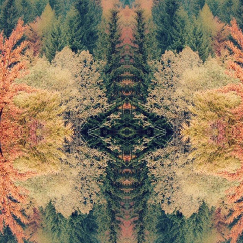 10 Top Tame Impala Innerspeaker Wallpaper FULL HD 1920×1080 For PC Background 2018 free download tame impala wallpaper 26 collections decran hd szftlgs 800x800