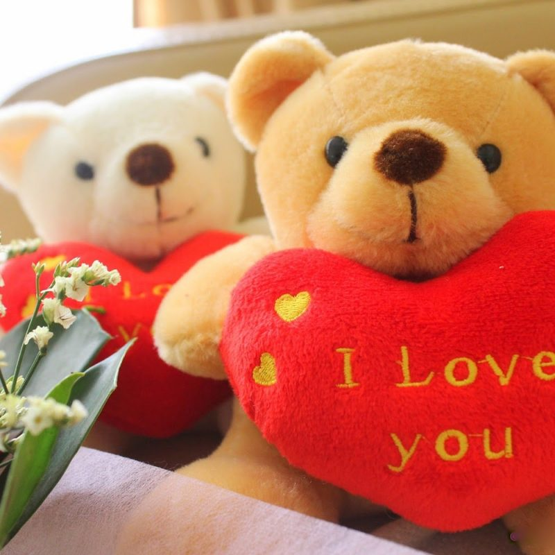 10 New Teddy Bear Love Image FULL HD 1080p For PC Background 2018 free download teddy bear love 7035815 800x800