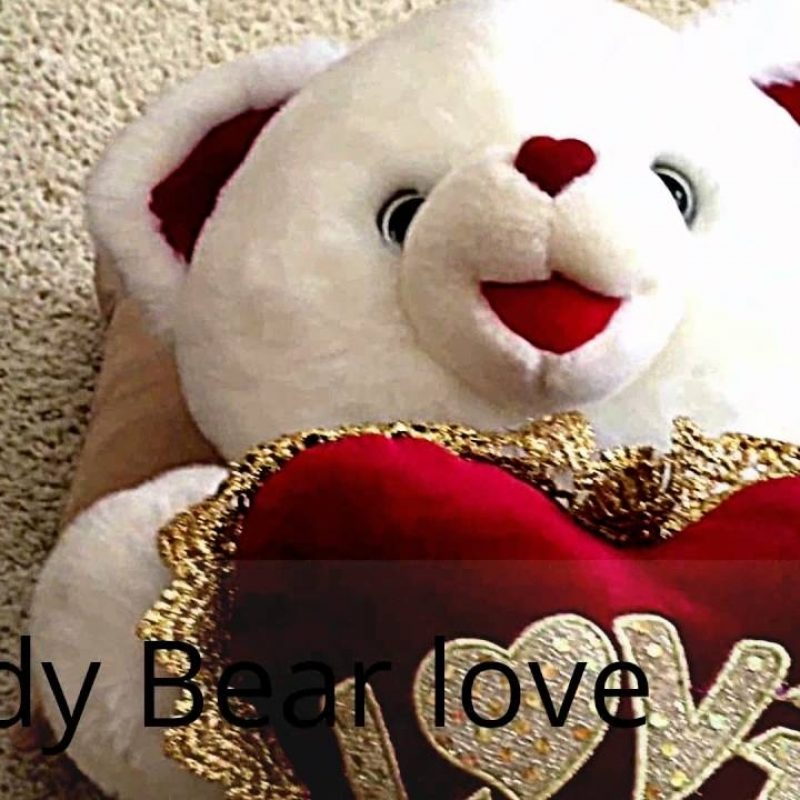 10 New Teddy Bear Love Image FULL HD 1080p For PC Background 2021 free download teddy bear love youtube 800x800