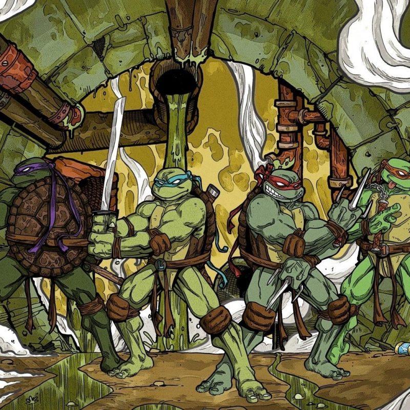 10 Most Popular Teenage Mutant Ninja Turtles Desktop Wallpaper FULL HD 1920×1080 For PC Desktop 2018 free download teenage mutant ninja turtles leonardo raphael michelangelo donatello 800x800