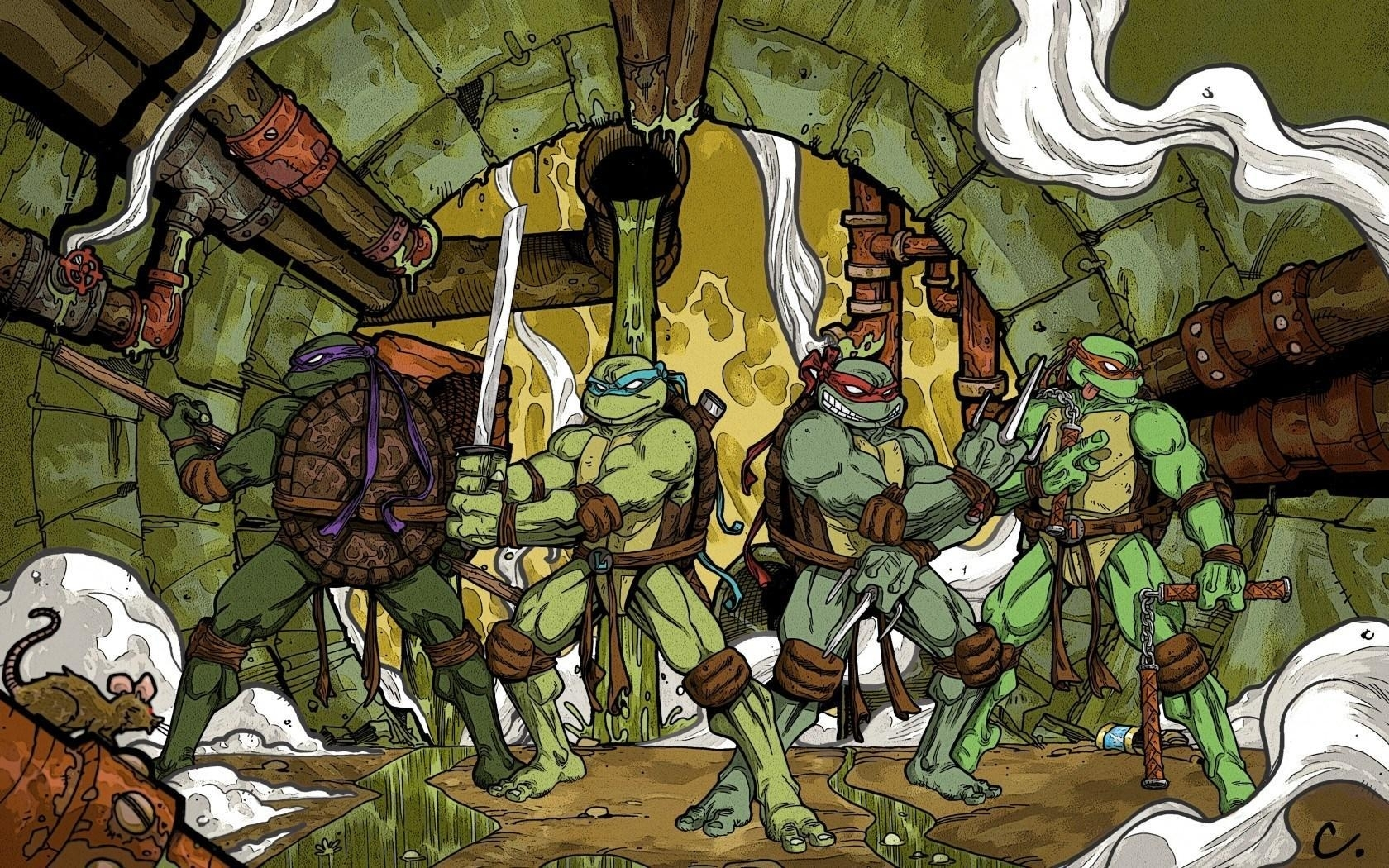 teenage mutant ninja turtles leonardo raphael michelangelo donatello
