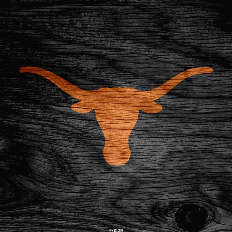 10 Most Popular Texas Longhorns Screen Savers FULL HD 1920×1080 For PC Desktop 2021 free download texas longhorn wallpaper screensavers 48 images 800x800