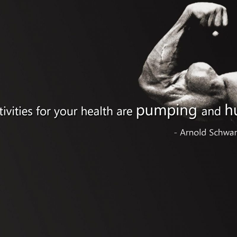 10 New Arnold Schwarzenegger Wallpaper 1920X1080 FULL HD 1920×1080 For PC Background 2018 free download text sports quotes arnold schwarzenegger actors bodybuilding 800x800