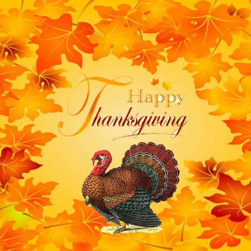 10 Top Happy Thanksgiving Turkey Wallpaper FULL HD 1920×1080 For PC Desktop 2018 free download thanks giving wallpapers group 84 1 800x800