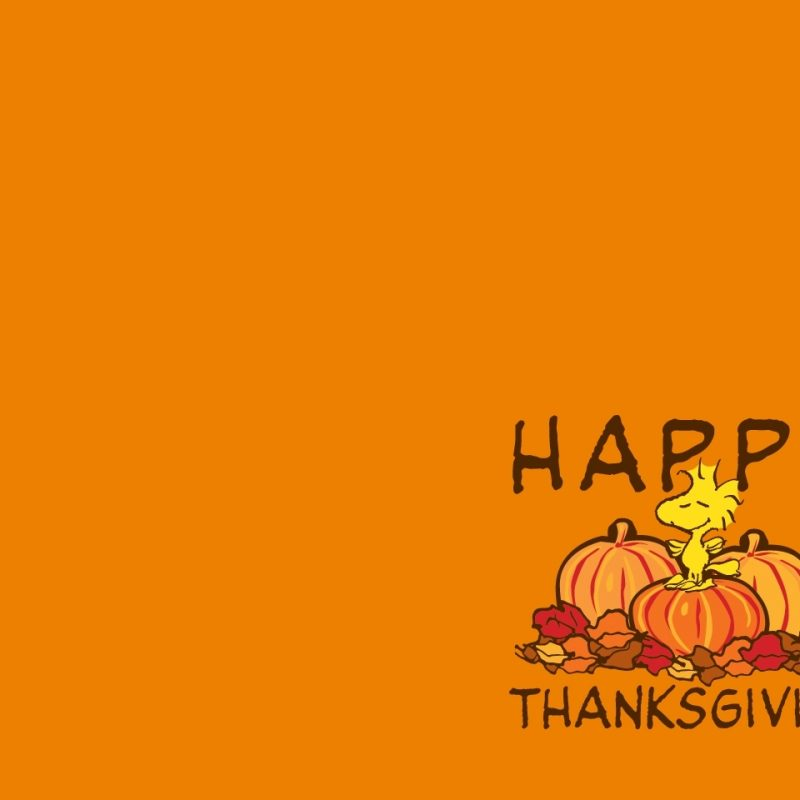 10 Best Thanksgiving Wallpaper For Android FULL HD 1920×1080 For PC Background 2018 free download thanksgiving day 2012 free hd thanksgiving wallpapers for ipad and 800x800