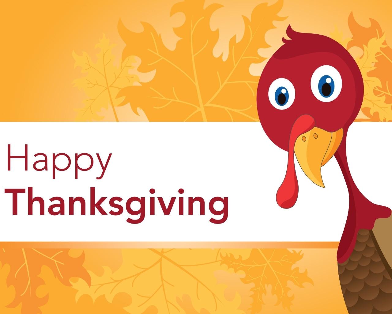 thanksgiving turkey amazing high resolution photos wallpaper