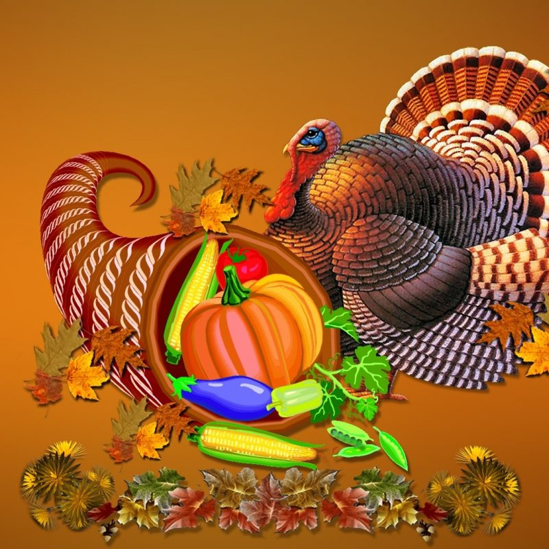 10 Most Popular Thanksgiving Turkey Desktop Backgrounds FULL HD 1080p For PC Background 2021 free download thanksgiving wallpaper desktop wallpaper 1406798 800x800