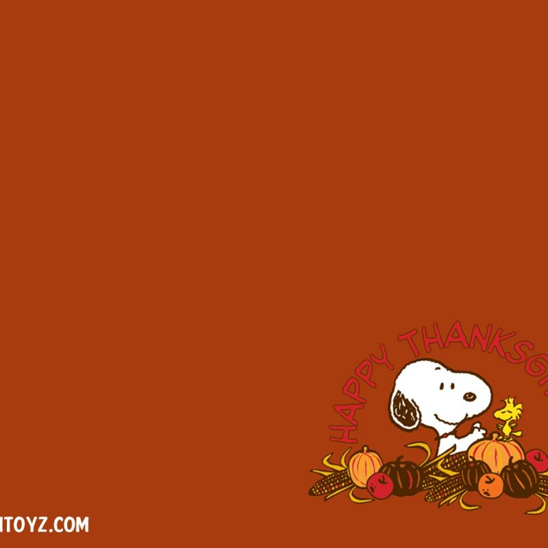 10 Best Thanksgiving Wallpaper For Android FULL HD 1920×1080 For PC Background 2018 free download thanksgiving wallpapers 01234 baltana 800x800