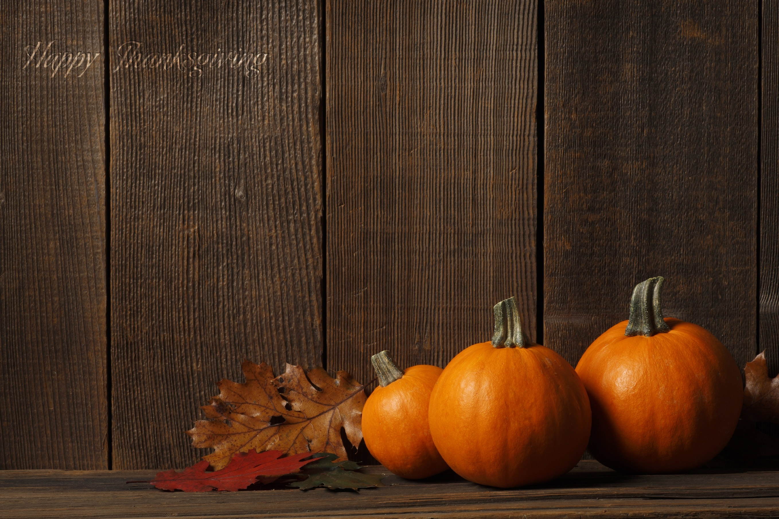 thanksgiving wallpapers, creative thanksgiving wallpapers - #wp