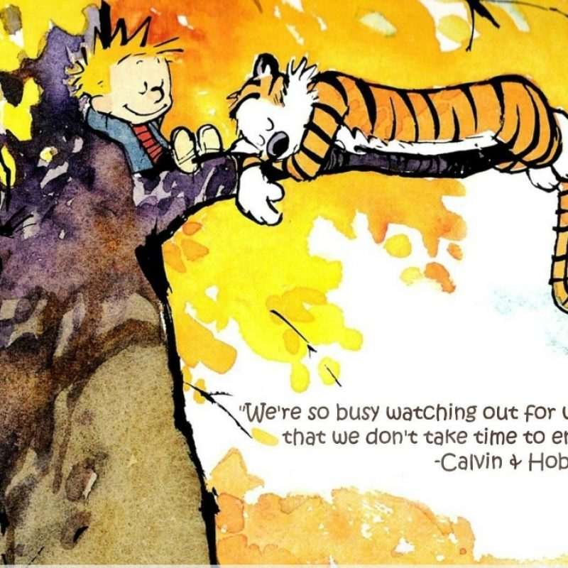 10 New Calvin And Hobbes Wallpaper Quote FULL HD 1080p For PC Background 2018 free download the best calvin and hobbes quotes for basically everything in life 800x800