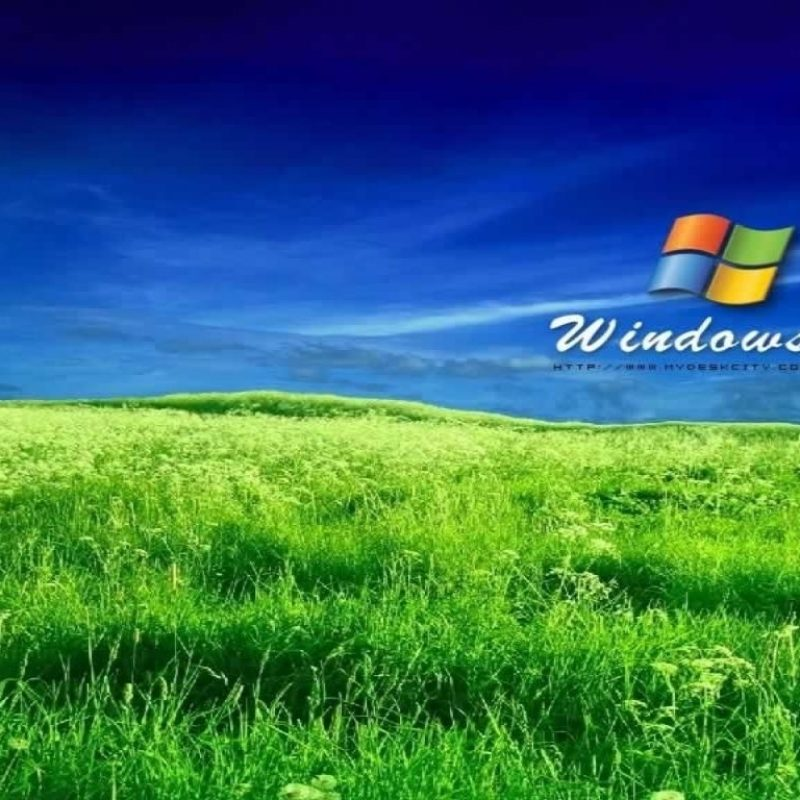 10 Best Window Xp Hd Wallpaper FULL HD 1080p For PC Desktop 2018 free download the best takes on the windows xp bliss wallpaper dorkly post hd 800x800