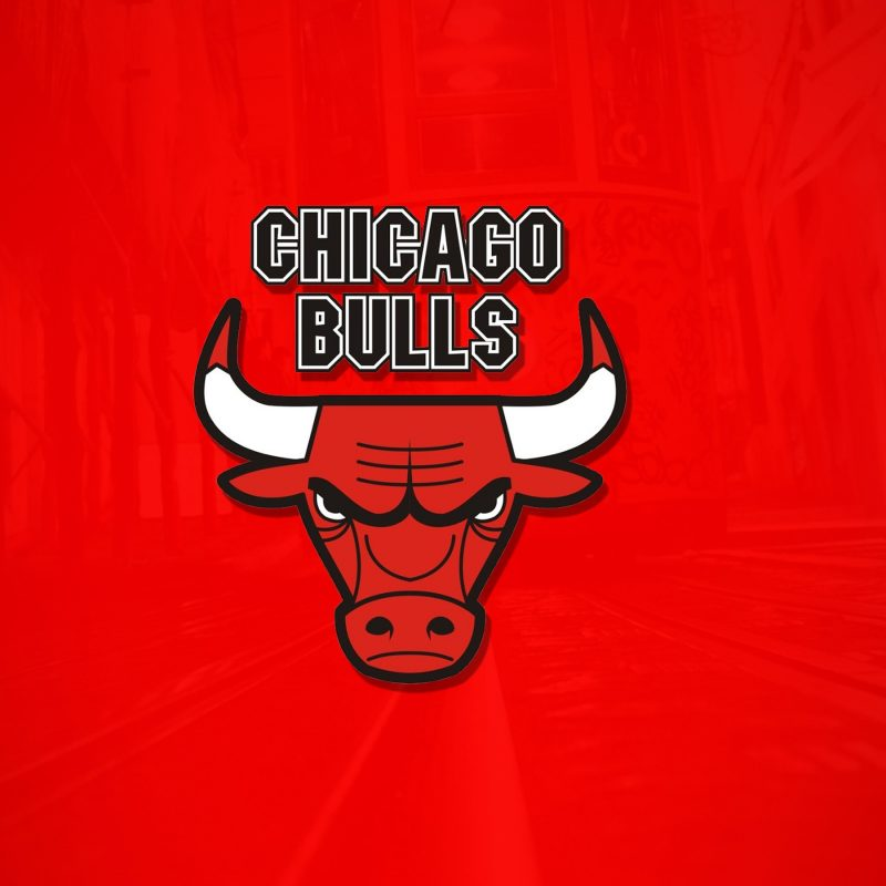 10 New Chicago Bulls Logo Wallpaper FULL HD 1080p For PC Desktop 2020 free download the chicago bulls wallpapers hd wallpapers id 17704 2 800x800