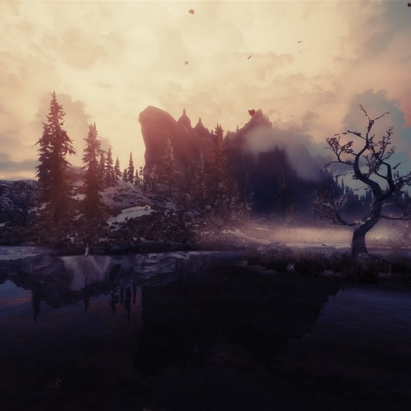 10 New Skyrim Landscape Wallpaper Hd FULL HD 1920×1080 For PC Desktop 2018 free download the elder scrolls v skyrim full hd fond decran and arriere plan 5 800x800