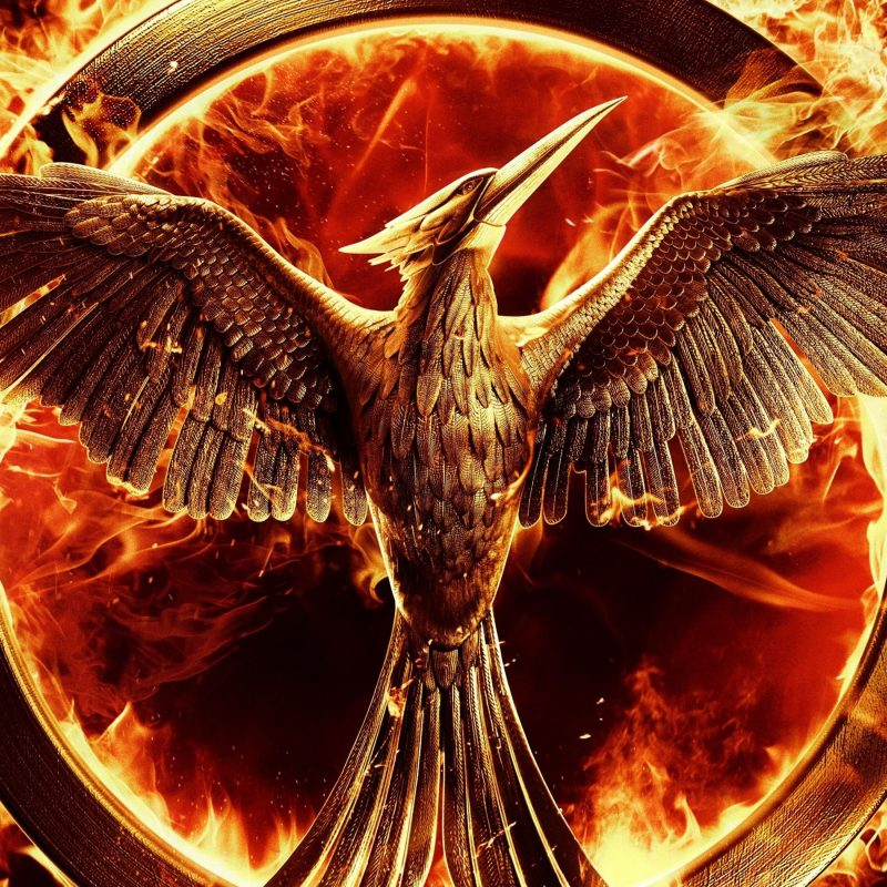 10 Most Popular The Hunger Games Wallpaper FULL HD 1080p For PC Desktop 2021 free download the hunger games mockingjay wallpapers wallpapers hd 800x800
