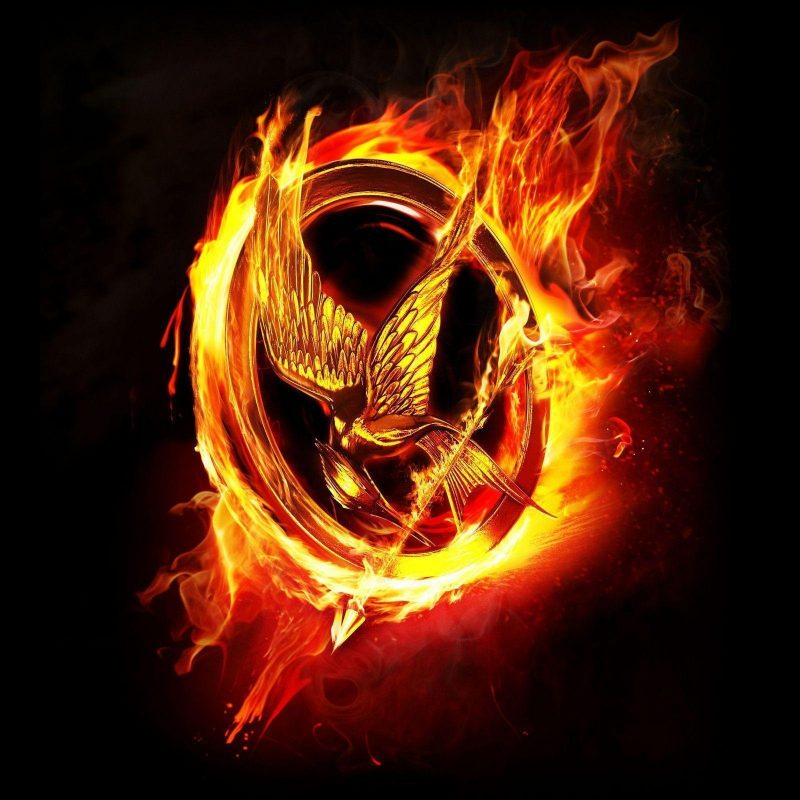 10 Most Popular The Hunger Games Wallpaper FULL HD 1080p For PC Desktop 2018 free download the hunger games wallpapers wallpaper cave 800x800