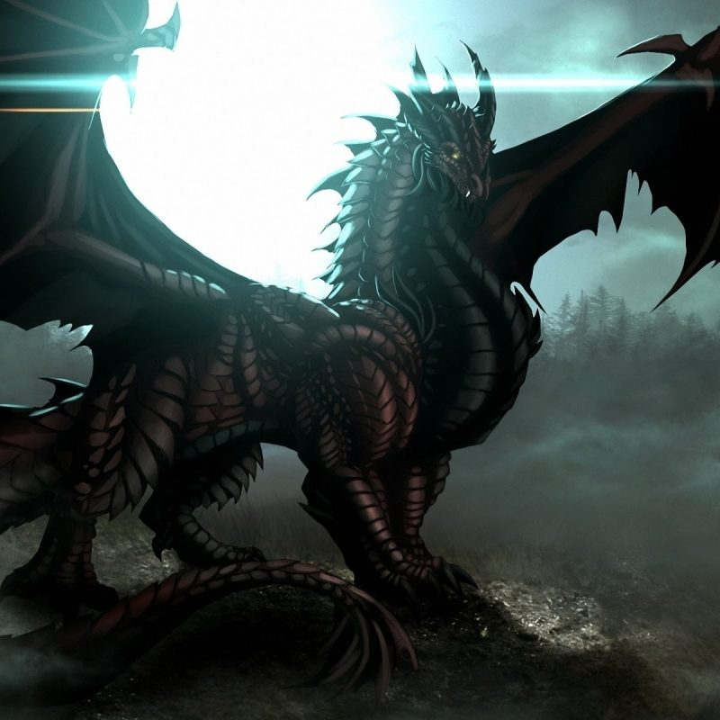 10 Most Popular Pictures Of Ice Dragon FULL HD 1920×1080 For PC Background 2020 free download the ice dragon youtube 800x800