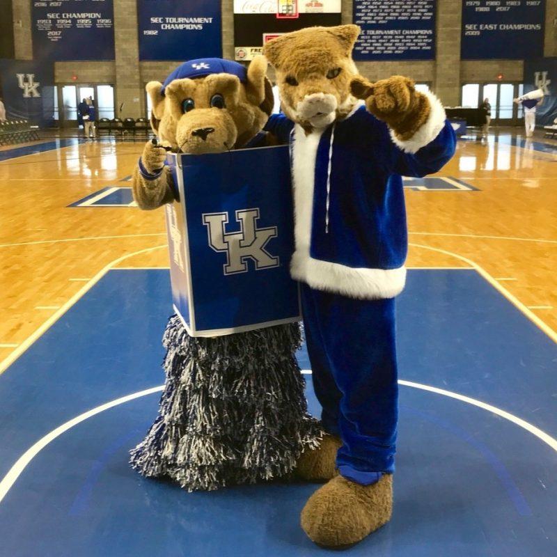 10 New Kentucky Wildcats Mascot Pictures FULL HD 1920×1080 For PC Desktop 2018 free download the kentucky wildcat the wildcat twitter 800x800