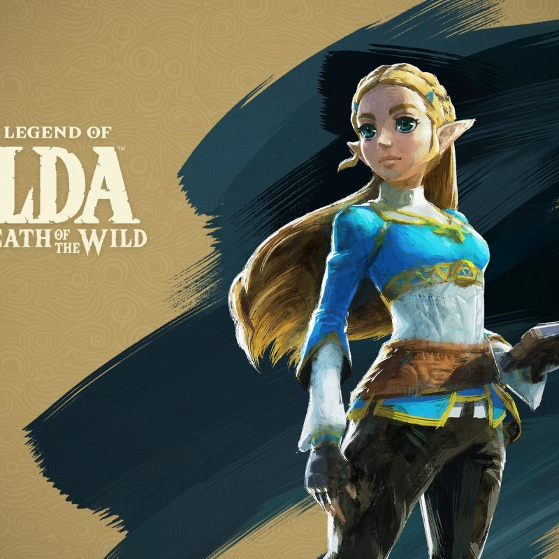 10 New Breath Of The Wild Zelda Wallpaper FULL HD 1920×1080 For PC Background 2018 free download the legend of zelda breath of the wild for the nintendo switch 1 800x800