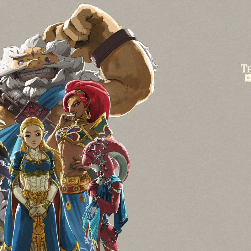 10 New Breath Of The Wild Zelda Wallpaper FULL HD 1920×1080 For PC Background 2018 free download the legend of zelda breath of the wild for the nintendo switch 2 800x800