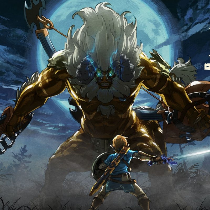 10 Latest Zelda Breath Of The Wild Wallpapers FULL HD 1920×1080 For PC Background 2020 free download the legend of zelda breath of the wild for the nintendo switch 800x800