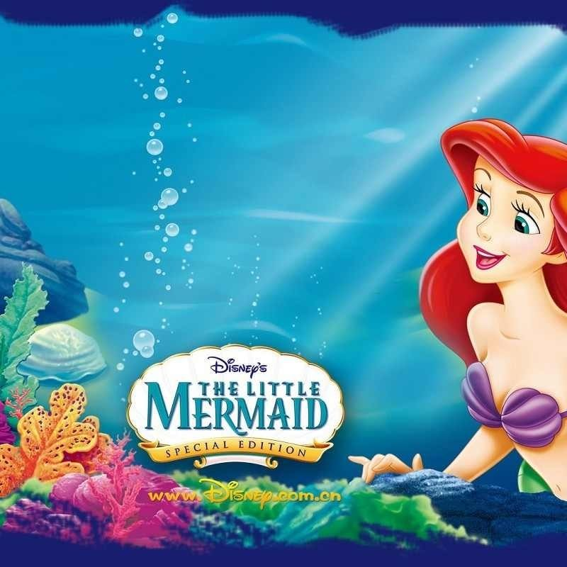 10 Latest The Little Mermaid Wallpapers FULL HD 1080p For PC Desktop 2018 free download the little mermaid wallpaper and background image 1280x800 id133043 800x800