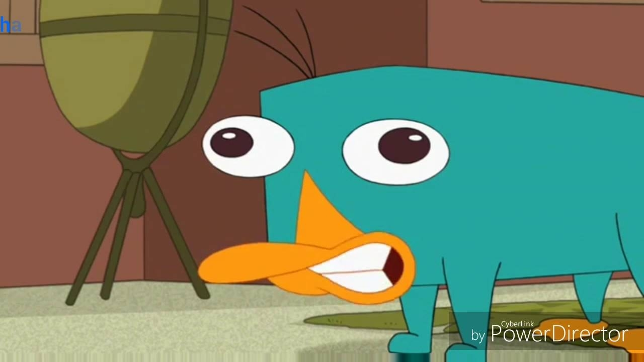 the perry the platypus sound - youtube