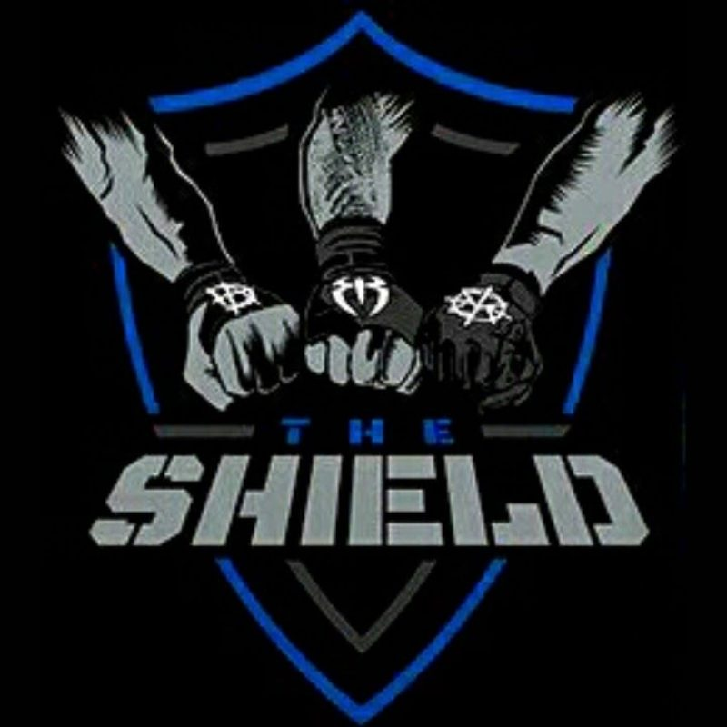 10 New Wwe The Shield Logo FULL HD 1920×1080 For PC Background 2018 free download the shield logo wwe shield logo www pixshark images 800x800