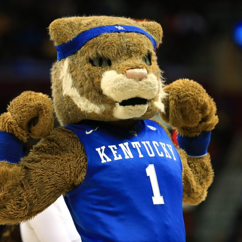 10 New Kentucky Wildcats Mascot Pictures FULL HD 1920×1080 For PC Desktop 2018 free download the take on all 14 sec mascots from the mouth of a 7 year old 800x800