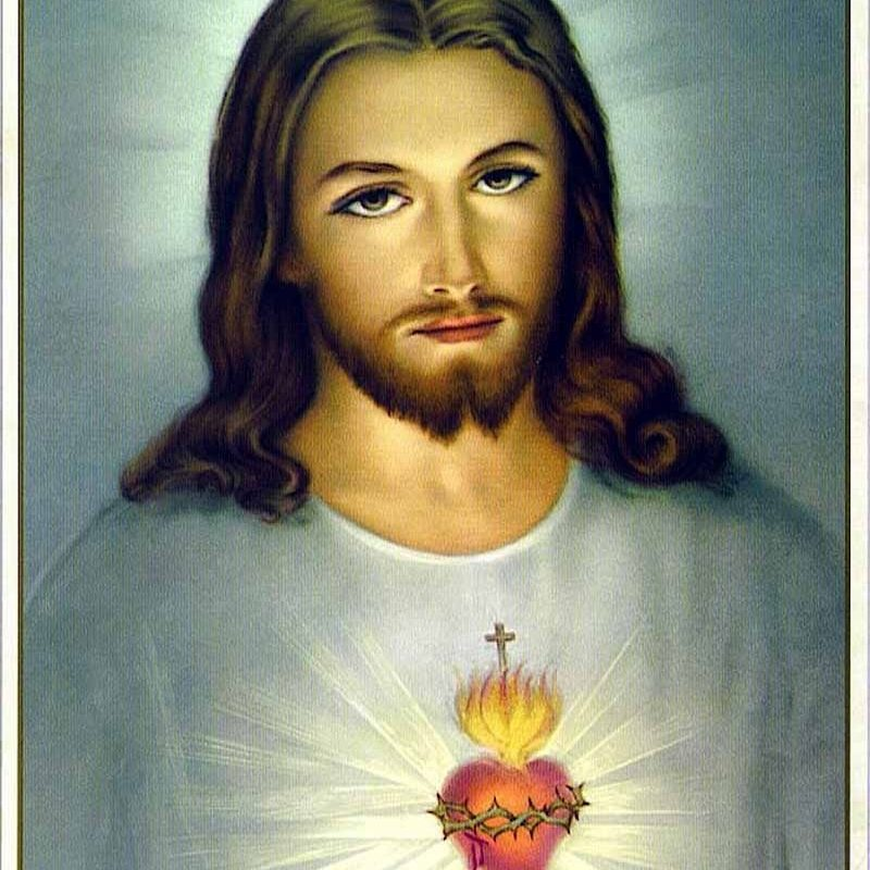 10 Most Popular Heart Of Jesus Image FULL HD 1080p For PC Desktop 2021 free download the unfathomable love of jesus christ is symbolizedthe burning 1 800x800