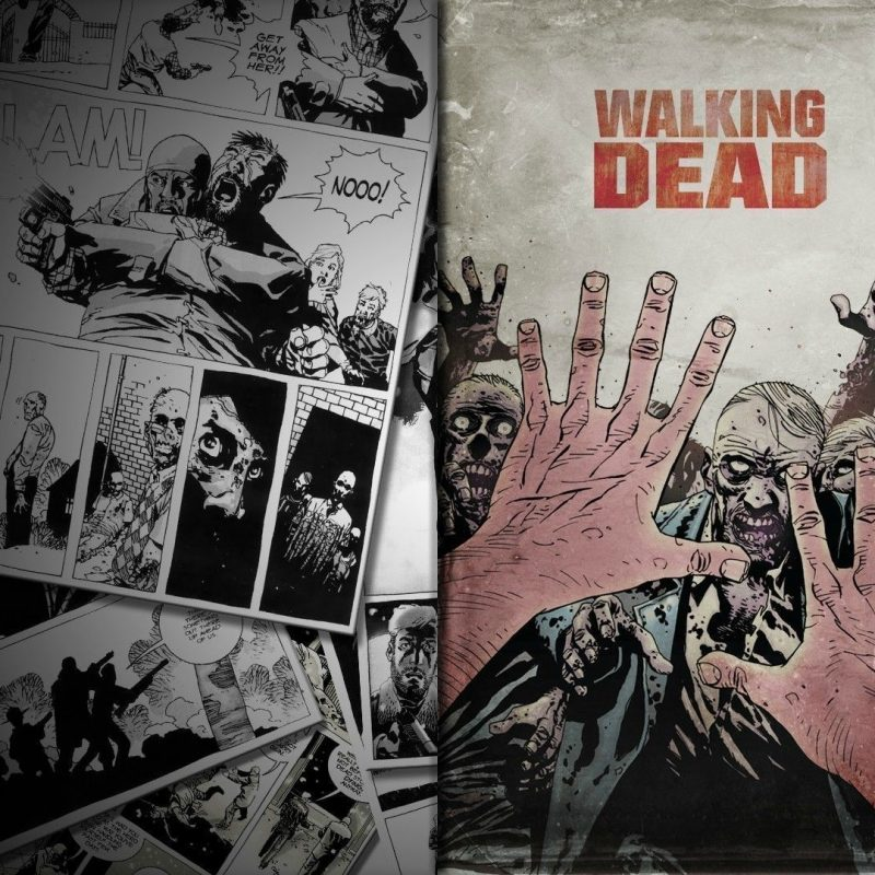 10 Top The Walking Dead Comics Wallpaper FULL HD 1080p For PC Background 2020 free download the walking dead 10 wallpaper comic wallpapers 26722 800x800