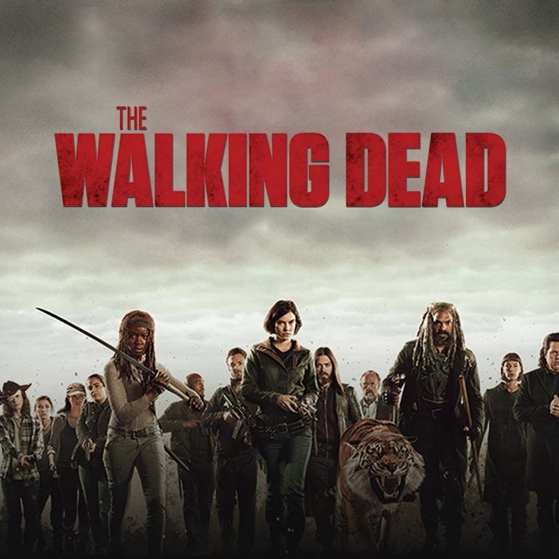 10 Latest The Walking Dead Season 8 Wallpaper FULL HD 1920×1080 For PC Background 2018 free download the walking dead season 8 wallpapers wallpaper cave 2 800x800