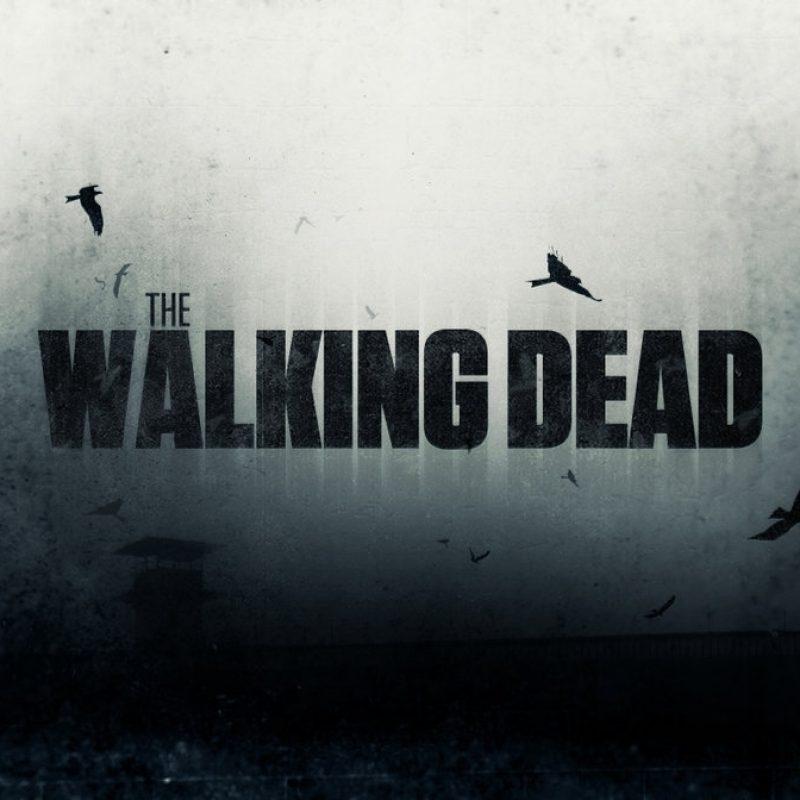 10 New The Walking Dead Wallpaper FULL HD 1080p For PC Background 2018 free download the walking dead wallpaperinickeon on deviantart 1 800x800