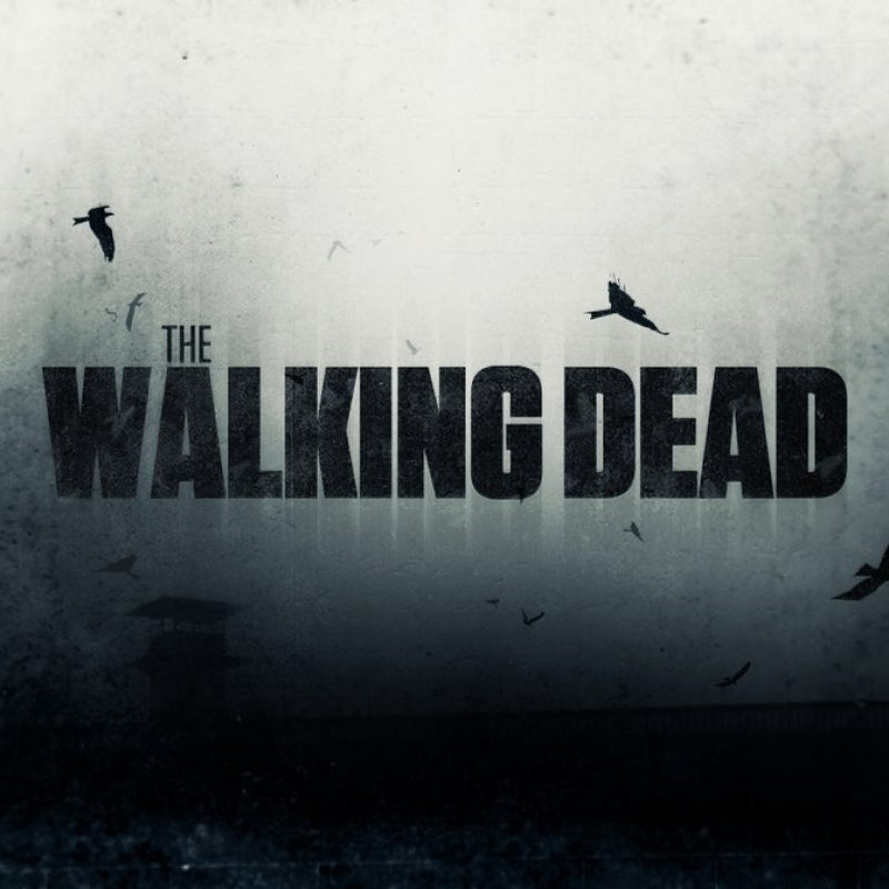 10 Most Popular The Walking Dead Wallpaper Hd FULL HD 1920×1080 For PC Background 2018 free download the walking dead wallpaperinickeon on deviantart 800x800