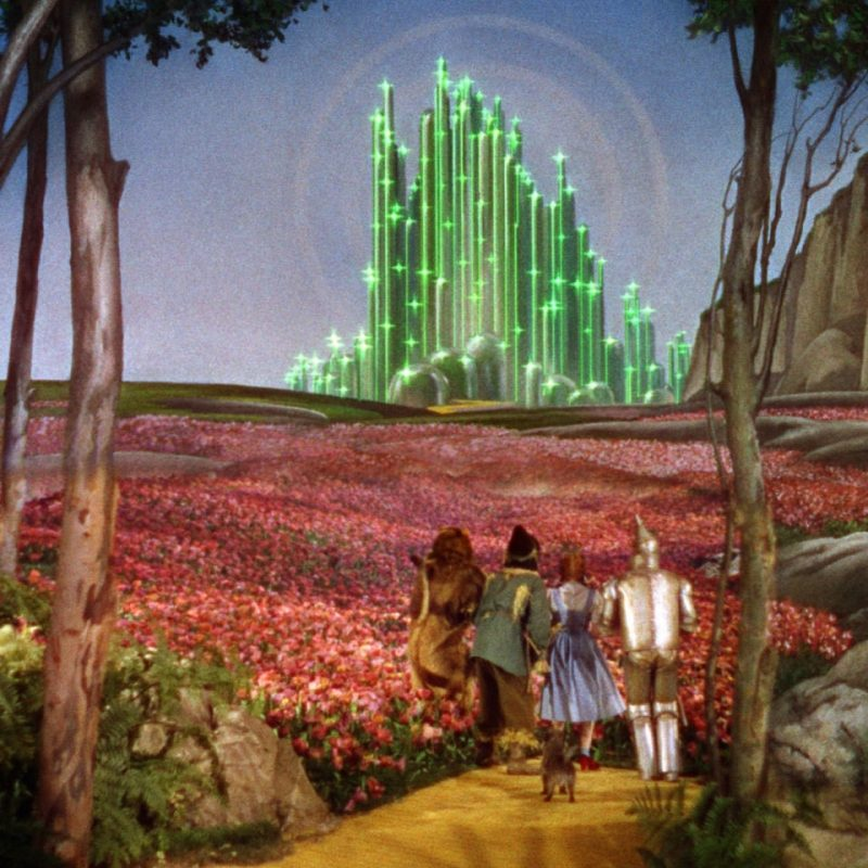10 Best The Wizard Of Oz Wallpaper FULL HD 1080p For PC Background 2018 free download the wizard of oz gorgeous desktop wallpaper backgrounds from movie 800x800