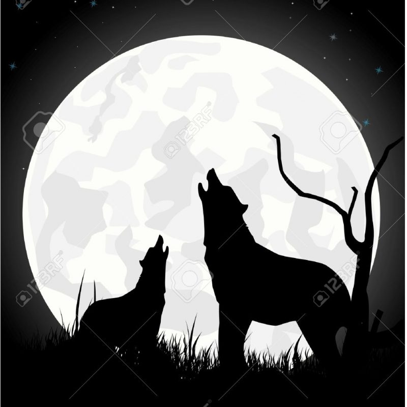 10 Latest Werewolf Howling At The Moon Pictures FULL HD 1080p For PC Desktop 2020 free download the wolf howls on the moon at night royalty free cliparts vectors 800x800
