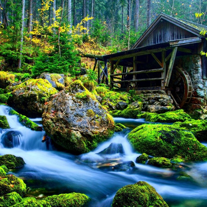 10 Top Wallpapers For Desktop 3D Nature FULL HD 1920×1080 For PC Background 2020 free download these 3d images of nature are the best of the best and make sure 800x800