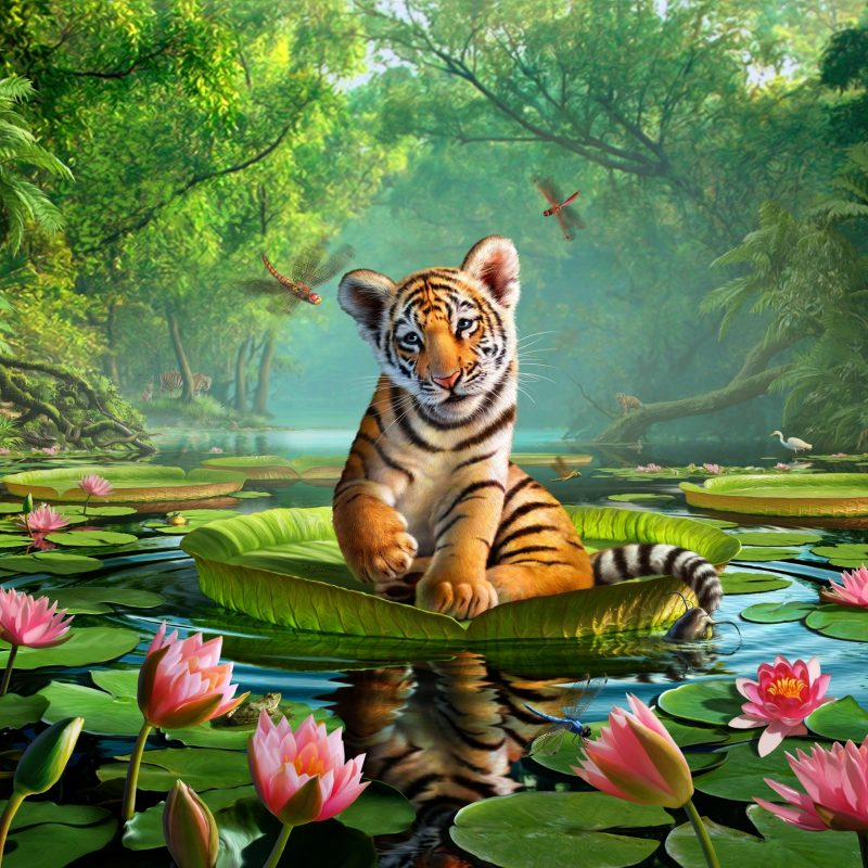 10 Latest Images Of Tiger Lily FULL HD 1920×1080 For PC Desktop 2021 free download tiger lily wall mural tiger lily wallpaper wallsauce 800x800
