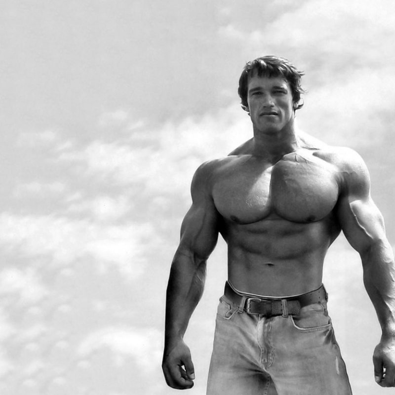 10 New Arnold Schwarzenegger Hd Wallpaper FULL HD 1920×1080 For PC Background 2018 free download top 49 arnold schwarzenegger images original 100 quality hd 800x800