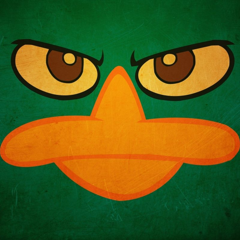 10 New Perry The Platypus Wallpaper FULL HD 1920×1080 For PC Background 2018 free download top 80 platypus wallpaper hd animal spot 800x800
