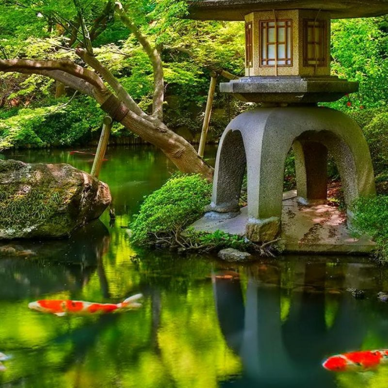 10 Best Japanese Garden Wallpaper 1920X1080 FULL HD 1080p For PC Desktop 2018 free download top japanese garden background in high quality goldwall 800x800
