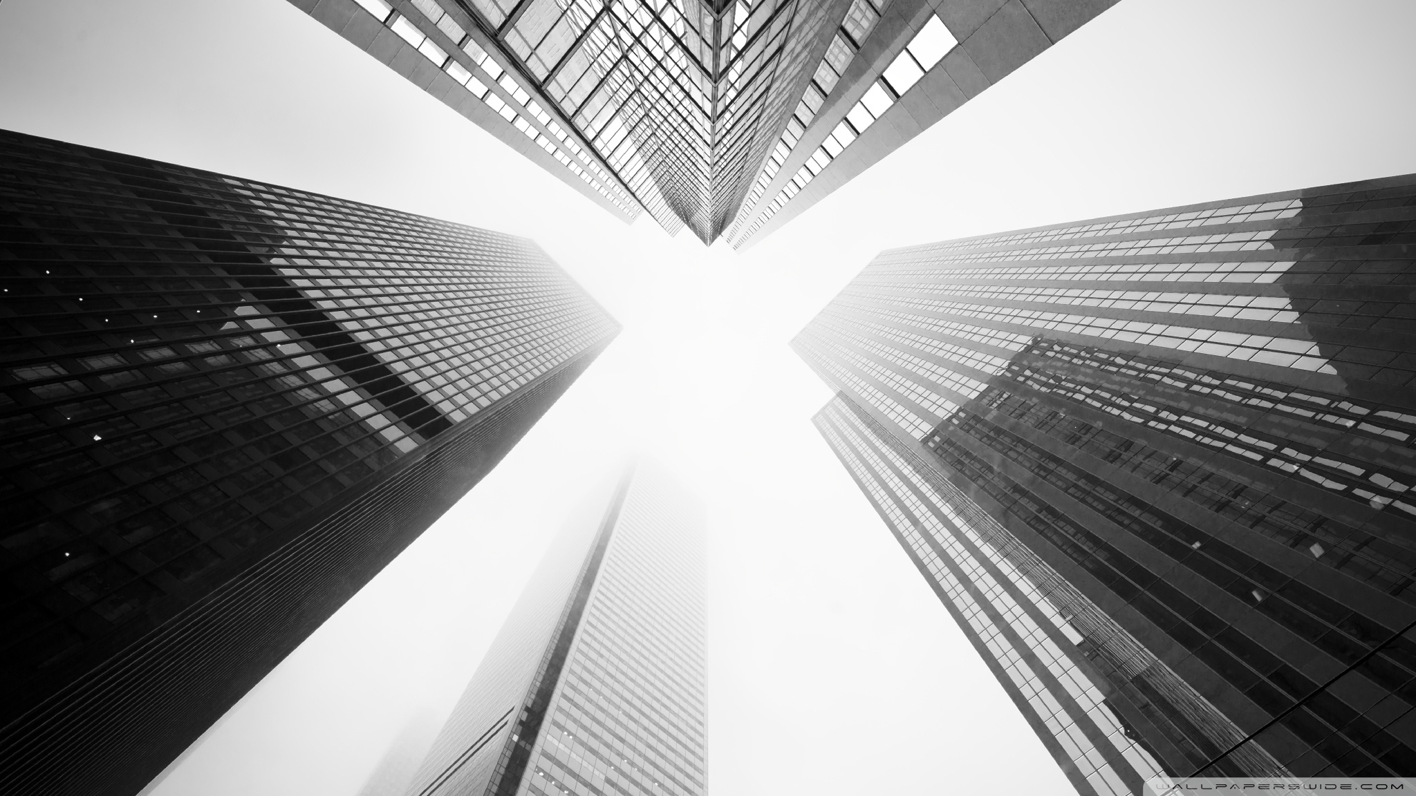 toronto skyscrapers black and white ❤ 4k hd desktop wallpaper for