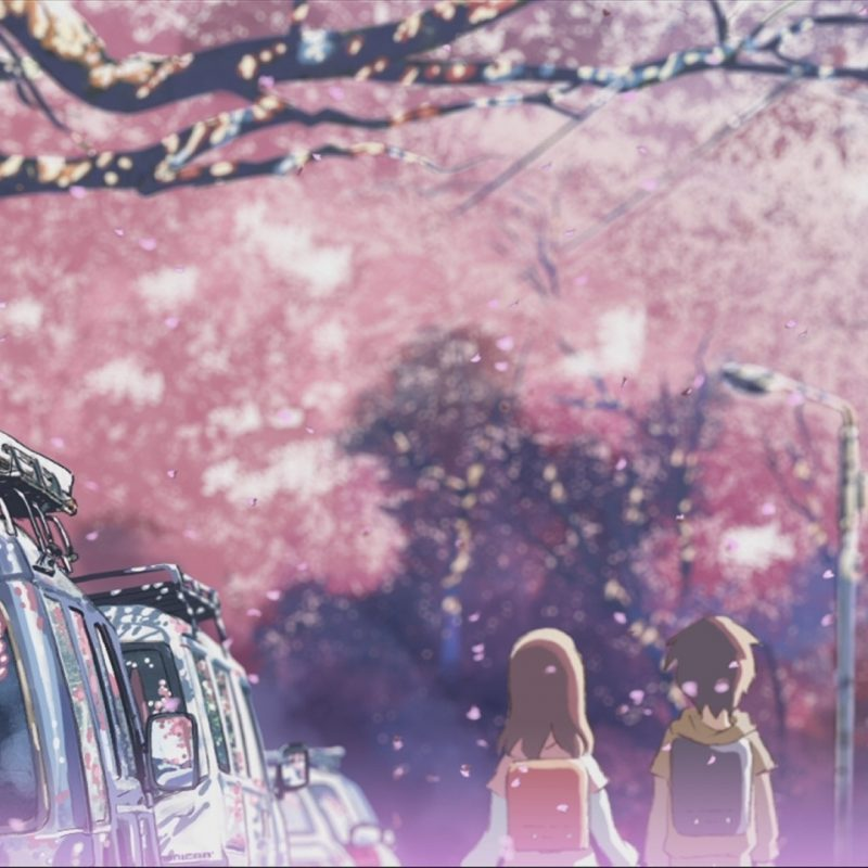 10 Most Popular Cherry Blossom Tree Anime Wallpaper FULL HD 1080p For PC Desktop 2018 free download tree sakura wallpapers second anime 158179 dart pinterest 800x800